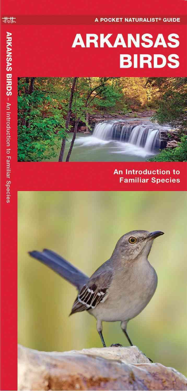 Arkansas Birds By Kavanagh, James